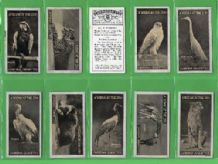 Tobacco Cigarette cards Animals in the zoo 1924 set
